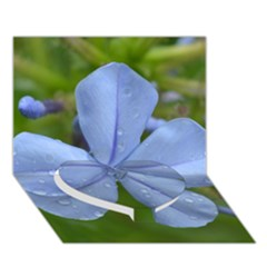 Blue Water Droplets Heart Bottom 3d Greeting Card (7x5)