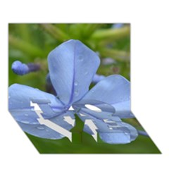 Blue Water Droplets LOVE Bottom 3D Greeting Card (7x5)