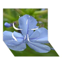 Blue Water Droplets Clover 3D Greeting Card (7x5)
