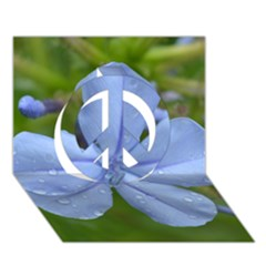 Blue Water Droplets Peace Sign 3D Greeting Card (7x5)