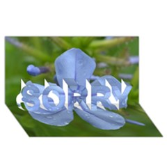 Blue Water Droplets Sorry 3d Greeting Card (8x4)