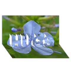 Blue Water Droplets HUGS 3D Greeting Card (8x4)