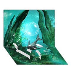 Wonderful Dolphin Love Bottom 3d Greeting Card (7x5)