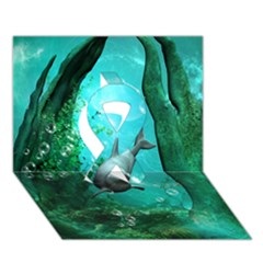Wonderful Dolphin Ribbon 3D Greeting Card (7x5)