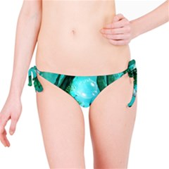 Wonderful Dolphin Bikini Bottoms