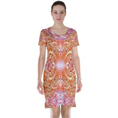 Peach Pink Elegant Abstract  Short Sleeve Nightdresses