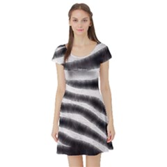 Zebra Print Abstract  Short Sleeve Skater Dresses