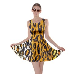 Animal print Abstract  Skater Dresses