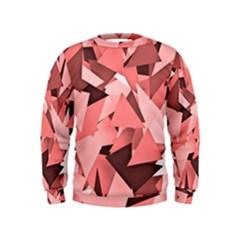 Geo Fun 8 Peach Boys  Sweatshirts