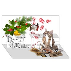 Free books for Christmas BELIEVE 3D Greeting Card (8x4)