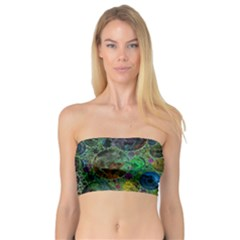 Lovely Allover Bubble Shapes Green Women s Bandeau Tops