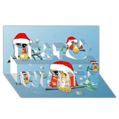 Funny, Cute Christmas Owls With Snowflakes Best Wish 3d Greeting Card (8x4)