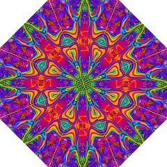 Abstract 1 Folding Umbrellas