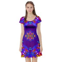 Abstract 2 Short Sleeve Skater Dresses