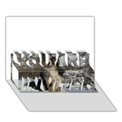Australian Shepherd In Snow 2 YOU ARE INVITED 3D Greeting Card (7x5)