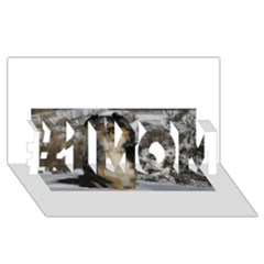 Australian Shepherd In Snow 2 #1 MOM 3D Greeting Cards (8x4)