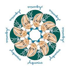 Aquarius Star Sign Hook Handle Umbrellas (Large)