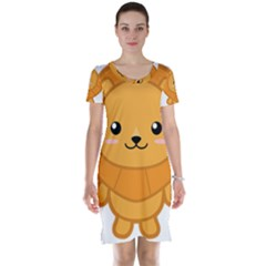 Kawaii Lion Short Sleeve Nightdresses