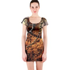 Steampunk In Noble Design Short Sleeve Bodycon Dresses