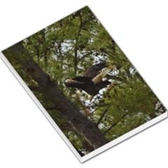 Bald Eagle Large Memo Pads
