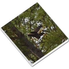 Bald Eagle Small Memo Pads