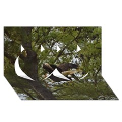 Bald Eagle Twin Hearts 3d Greeting Card (8x4)