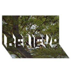 Bald Eagle Believe 3d Greeting Card (8x4)