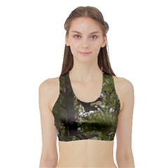 Bald Eagle Women s Sports Bra with Border