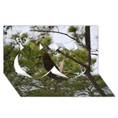 Bald Eagle 2 Twin Hearts 3d Greeting Card (8x4)