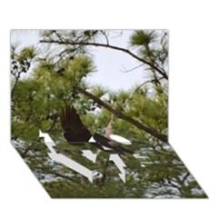 Bald Eagle 2 LOVE Bottom 3D Greeting Card (7x5)