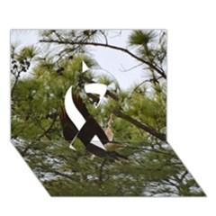 Bald Eagle 2 Ribbon 3D Greeting Card (7x5)