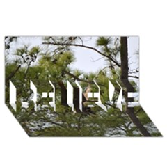 Bald Eagle 2 BELIEVE 3D Greeting Card (8x4)