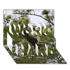 Bald Eagle 2 WORK HARD 3D Greeting Card (7x5)