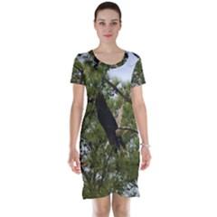 Bald Eagle 2 Short Sleeve Nightdresses