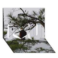 Bald Eagle 3 I Love You 3D Greeting Card (7x5)