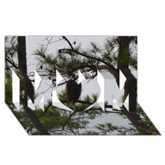 Bald Eagle 3 MOM 3D Greeting Card (8x4)