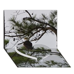 Bald Eagle 3 Heart Bottom 3d Greeting Card (7x5)