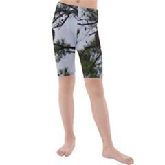 Bald Eagle 3 Kid s swimwear