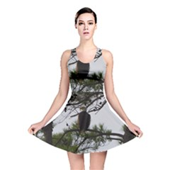 Bald Eagle 3 Reversible Skater Dresses