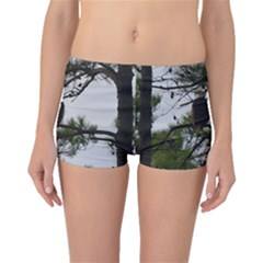 Bald Eagle 3 Boyleg Bikini Bottoms