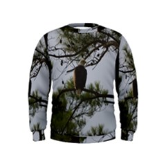 Bald Eagle 4 Boys  Sweatshirts