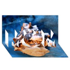 Sea Shell Spiral MOM 3D Greeting Card (8x4)