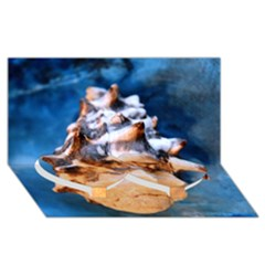Sea Shell Spiral Twin Heart Bottom 3D Greeting Card (8x4)