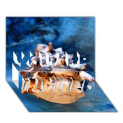 Sea Shell Spiral You Are Invited 3d Greeting Card (7x5)
