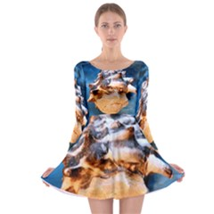 Sea Shell Spiral Long Sleeve Skater Dress