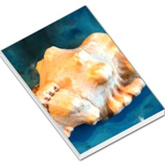 Sea Shell Spiral 2 Large Memo Pads