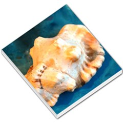 Sea Shell Spiral 2 Small Memo Pads