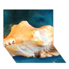 Sea Shell Spiral 2 Circle Bottom 3D Greeting Card (7x5)