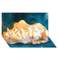 Sea Shell Spiral 2 Sorry 3d Greeting Card (8x4)