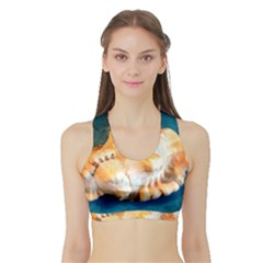 Sea Shell Spiral 2 Women s Sports Bra with Border